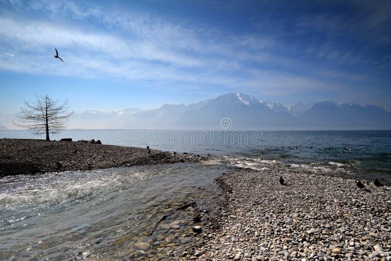 Switzerland Landscape : Geneva Lake of Montreux stock images
