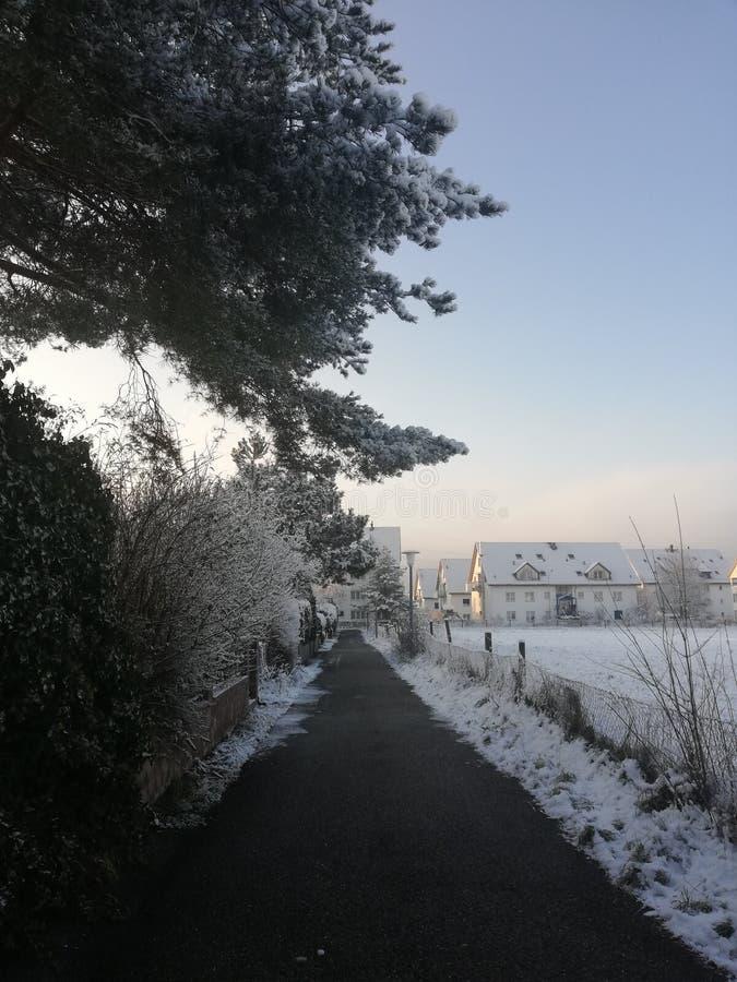 switzerland fotografia stock libera da diritti