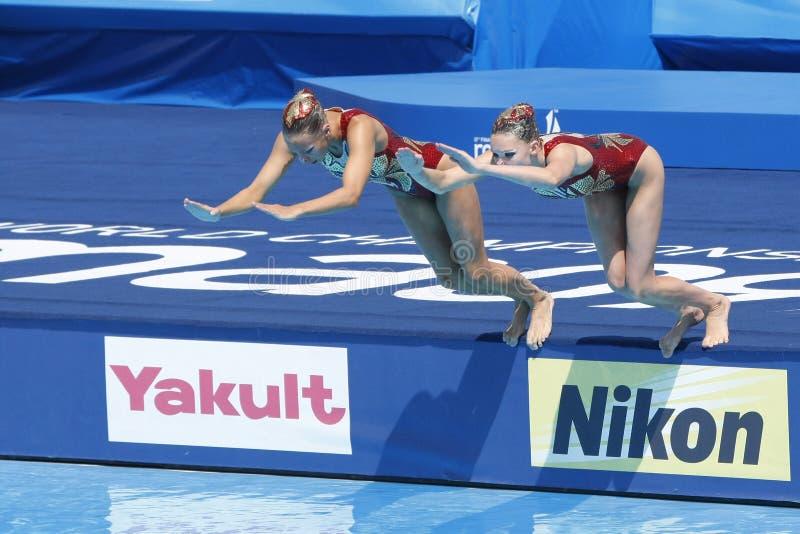 SWM: Wereld Aquatische Kampioenschappen - het Gesynchroniseerde zwemmen stock afbeelding