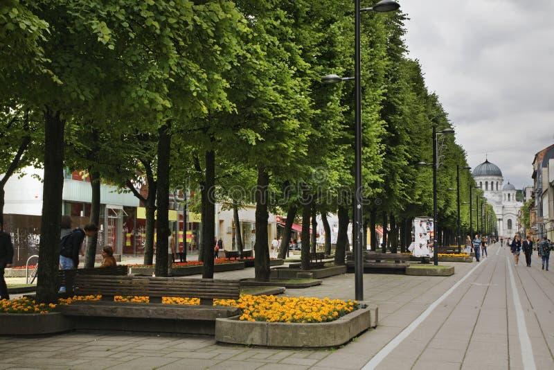 Swoboda bulwar - laisvÄ-s aleja w Kaunas Lithuania zdjęcia stock