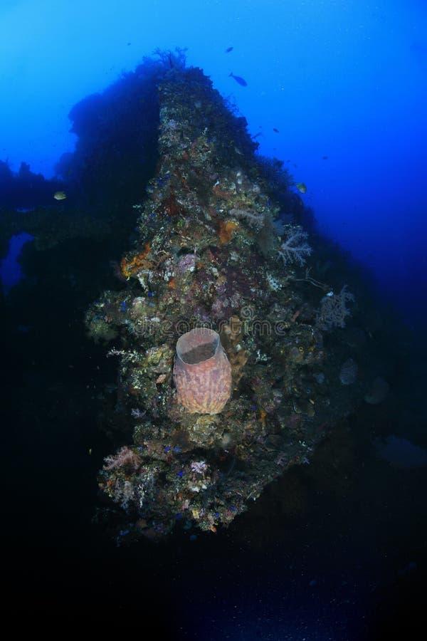 swobody shipwreck zdjęcia royalty free