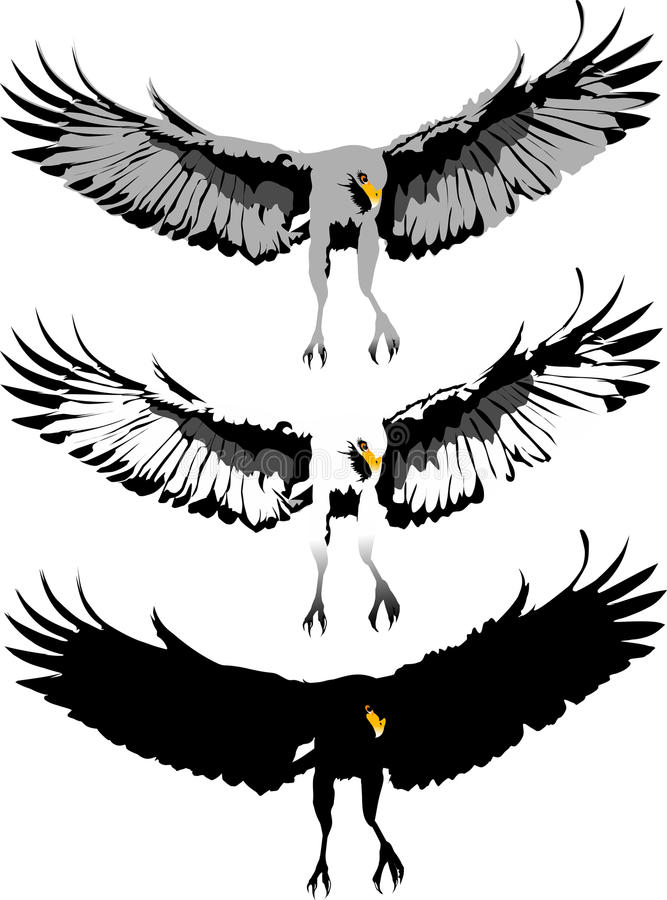 Swooping eagle stock illustration