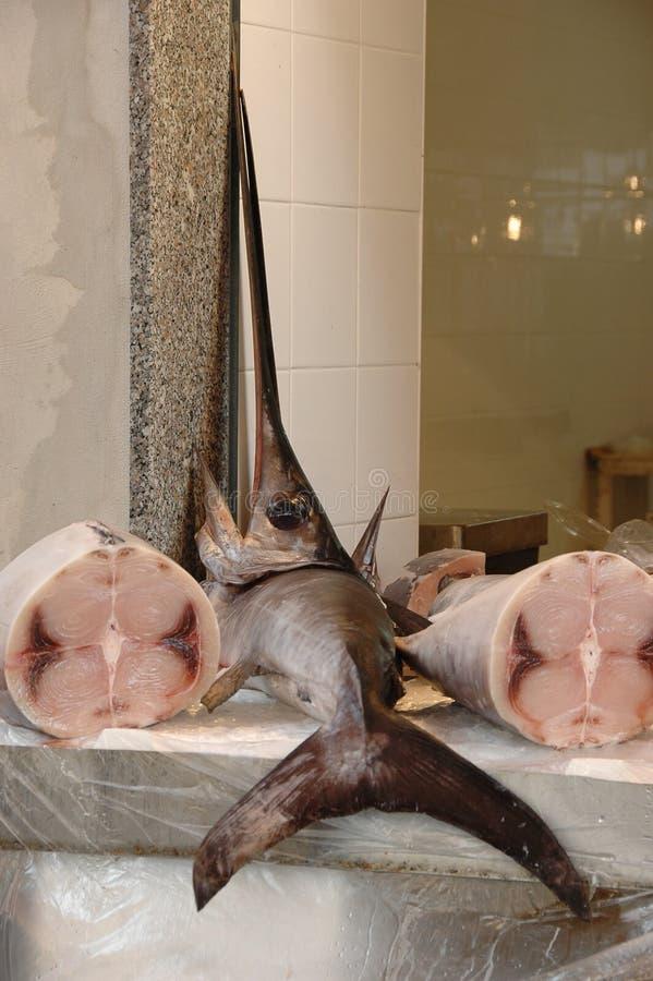 Swordfish imagens de stock royalty free