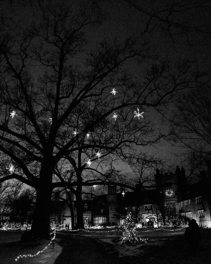 Syan Hywett Corridoio & giardini in bianco e nero e decorati per il Natale fotografie stock libere da diritti