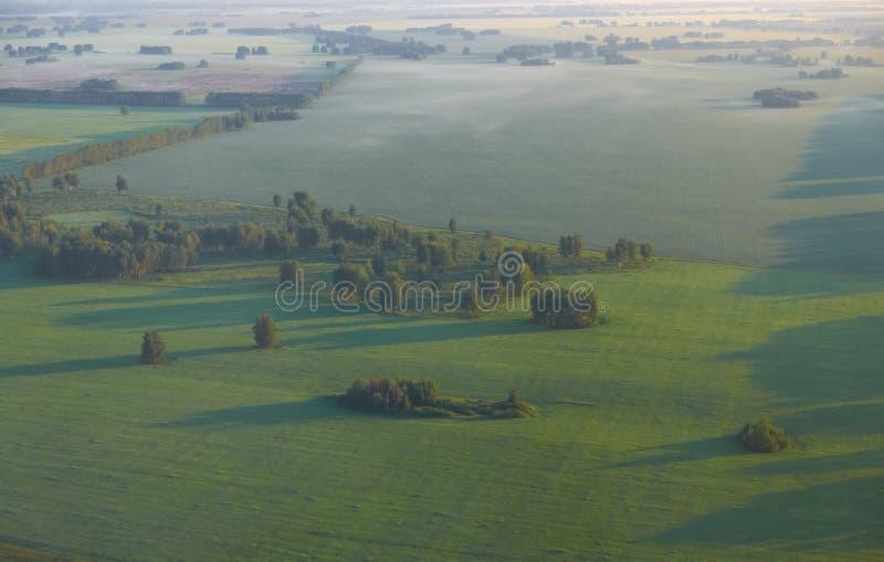 syberyjska równina Ptasi ` s oka widok od samolotu Step r fotografia royalty free