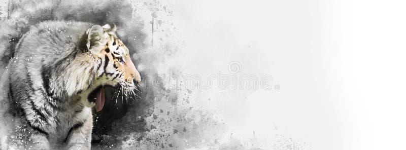 Syberyjski tygrys mieszał medialnego sztandar z subtelnym colour ilustracji