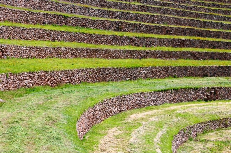 Sydamerika Moray, Cusco, Peru arkivbild