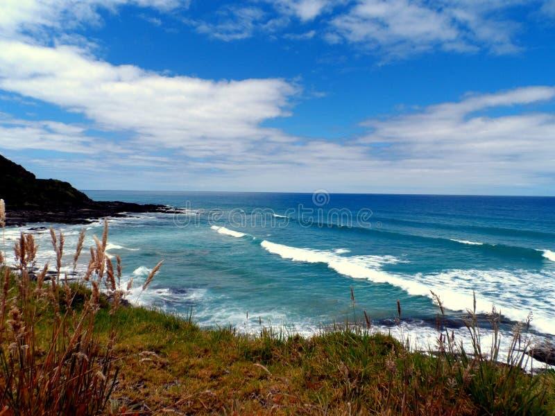 Sydkust Australien royaltyfri fotografi