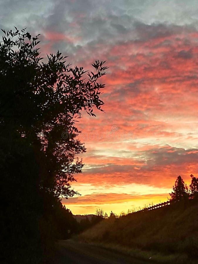 Sydlig oregon soluppgång royaltyfria foton