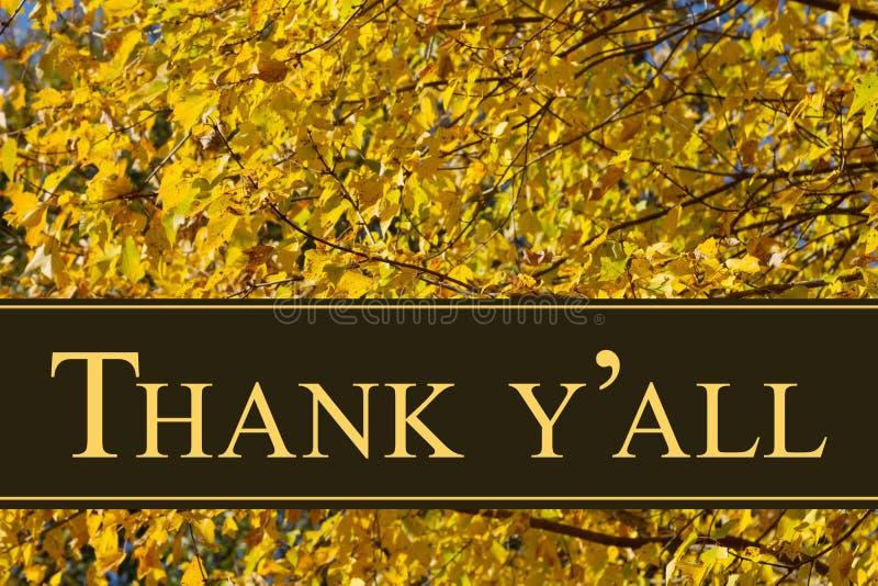 Sydligt tacka dig hälsningen royaltyfri bild