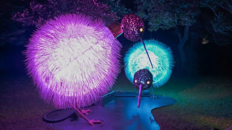 SYDNEY, AUSTRÁLIA - JUNHO, 5, 2017: a instalação da arte do quivi em sydney para o festival vívido em 2017 imagem de stock royalty free