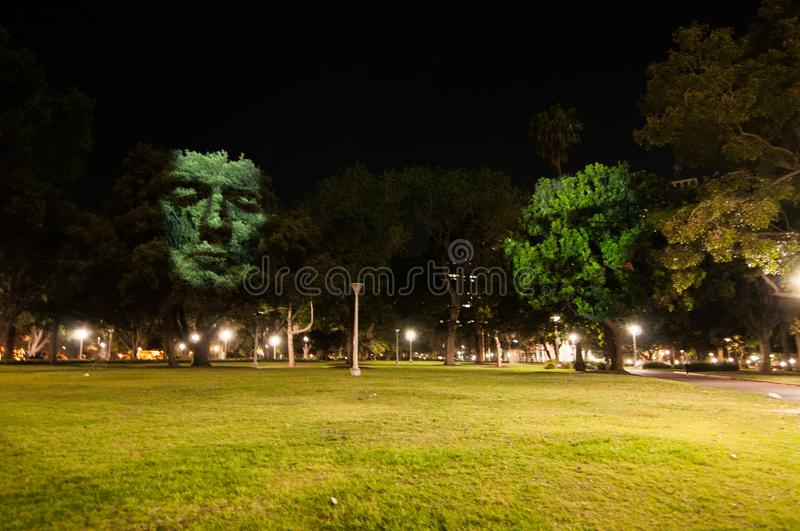 The artwork shows human faces by projector light on the trees in the project of Art & About Sydney. stock images