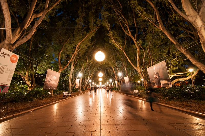 Night photography of Hyde park with beautiful bright light decoration along the pavement. royalty free stock photos