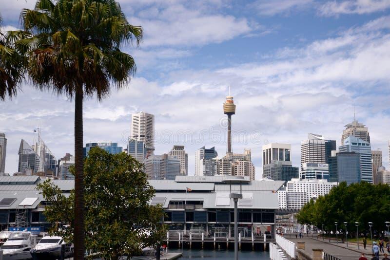 Sydney Australia-horizon met radiotoren royalty-vrije stock afbeelding