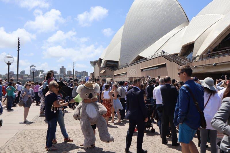 Sydney Australia 16/11/2018 - Tłoczy się czekanie widzieć przelotne spojrzenie Duchess Sussex i diuk przy Sydney operą zdjęcie royalty free