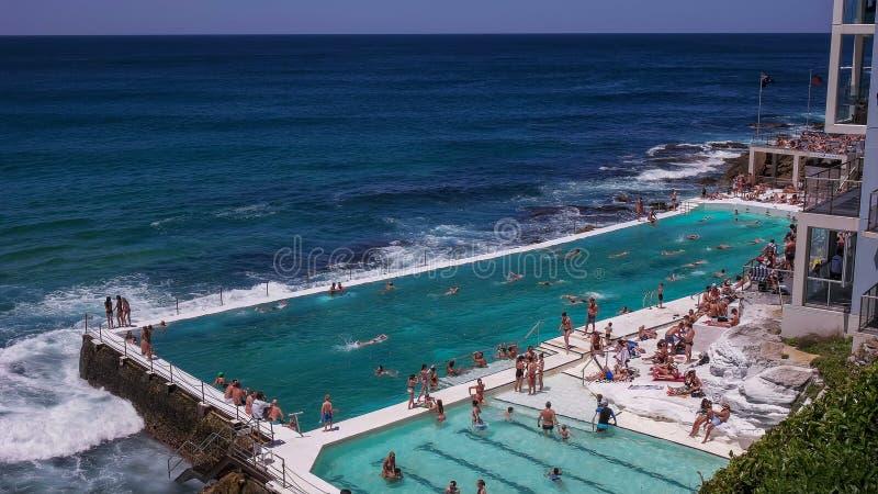SYDNEY, AUSTRALIEN - 31. JANUAR 2016: das Eisbergpool an bondi Strand, Australiens berühmter Strand lizenzfreie stockfotos