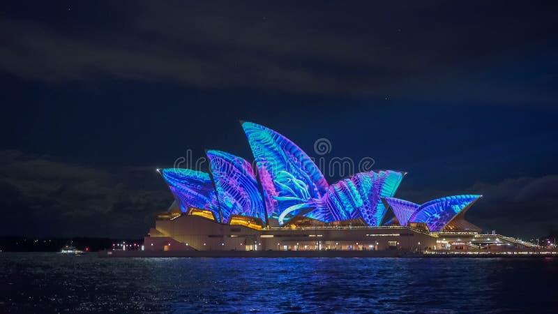 SYDNEY AUSTRALIEN - JUNI, 5, 2017: blåa tentakel som projekteras på den sydney operahuset för livlig 2017 royaltyfri fotografi