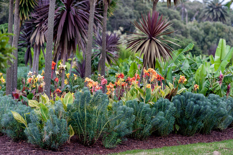 Sydney Centennial Park with Blooming Flowers stock image