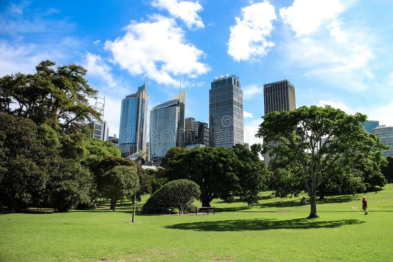 Sydney Central Business District from Royal Botanic Gardens foto de stock royalty free