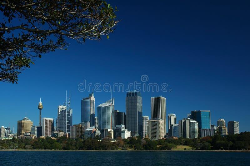 Sydney City royalty free stock image