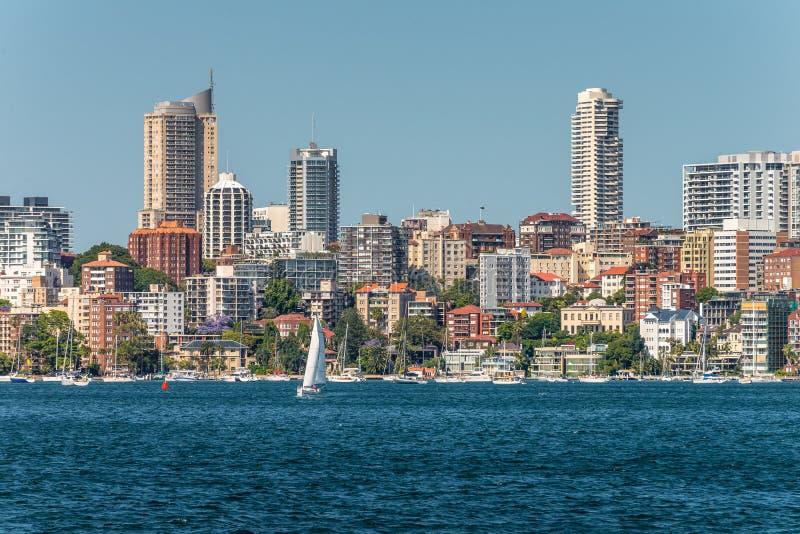 Sydney City Skyline - Elizabeth bay royalty free stock images