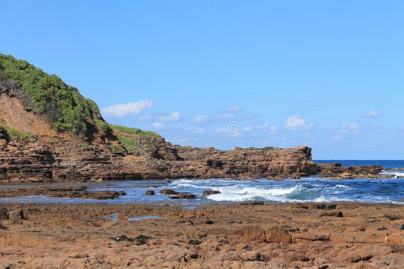 Sydney Coastline stock afbeelding