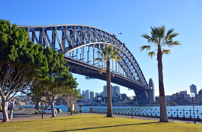 Sydney Harbour Bridge et palmiers de parc de point de Dawes photographie stock libre de droits