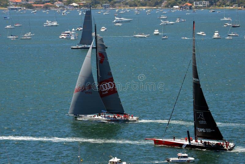 Sydney - Hobart Yacht Race 2014 arkivfoto