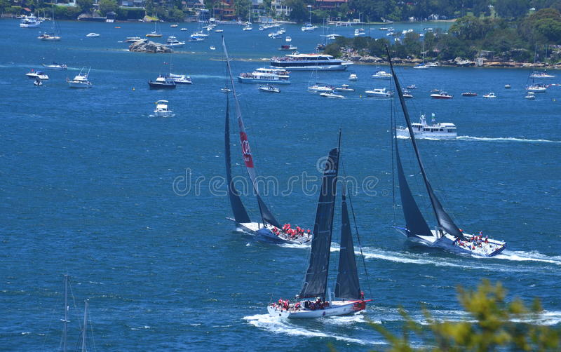 Sydney - Hobart Yacht Race 2014 royaltyfria bilder