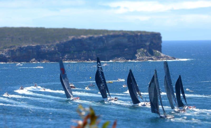 Sydney Hobart Yacht Race 2013 royaltyfria bilder