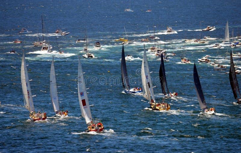 Sydney Hobart Yacht Race 2013 royaltyfri fotografi
