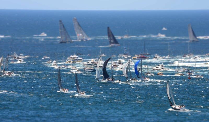 Sydney Hobart Yacht Race 2013 arkivbild
