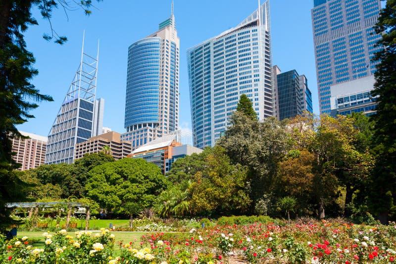Sydney, New South Wales, Australien stockbild