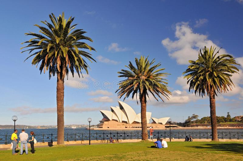 Sydney Opera House, Dawes-puntpark met palmen als voorgrond, Sydney Australia stock afbeelding