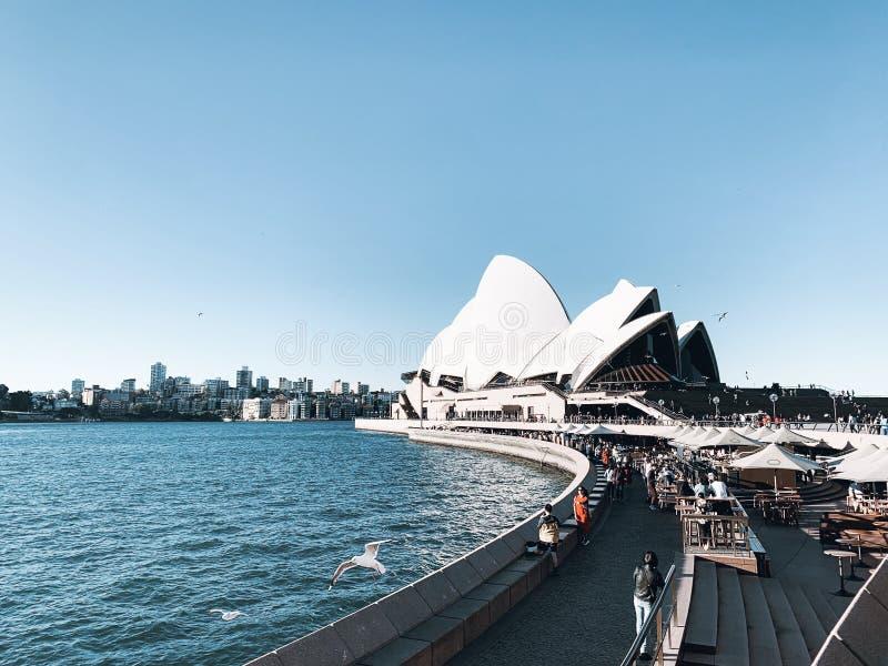 Sydney Opera House arkivfoton