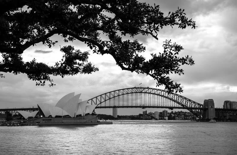 Sydney Opera House- und Sydney-Skyline stockfotos