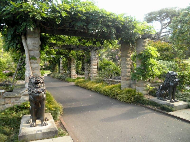 Sydney Park Garden fotos de archivo libres de regalías