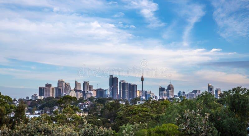 Sydney Skyline com as árvores no primeiro plano fotografia de stock