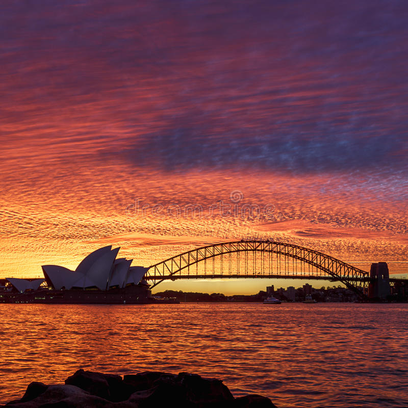 Sydney Sunset - fyrkant royaltyfri fotografi