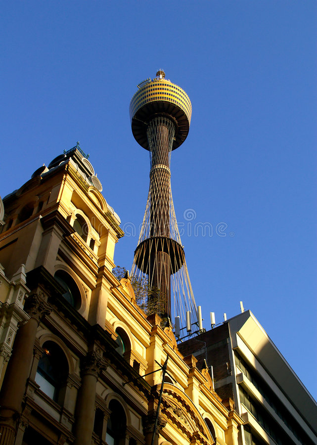 Free Sydney Tower Royalty Free Stock Photo - 1360515