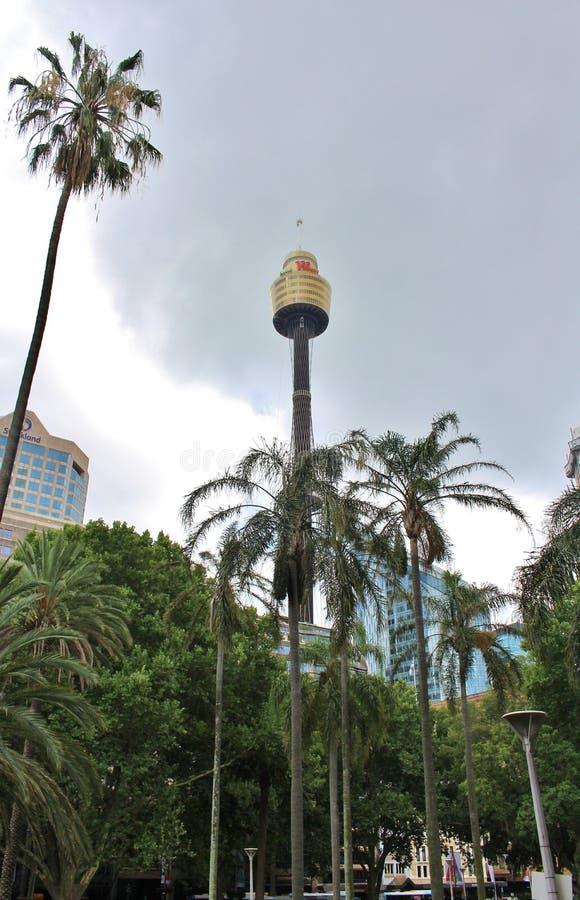 Sydney Tower imagens de stock royalty free