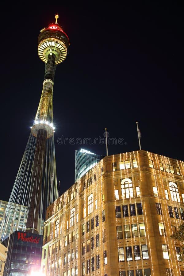 Sydney Tower alla notte fotografie stock libere da diritti