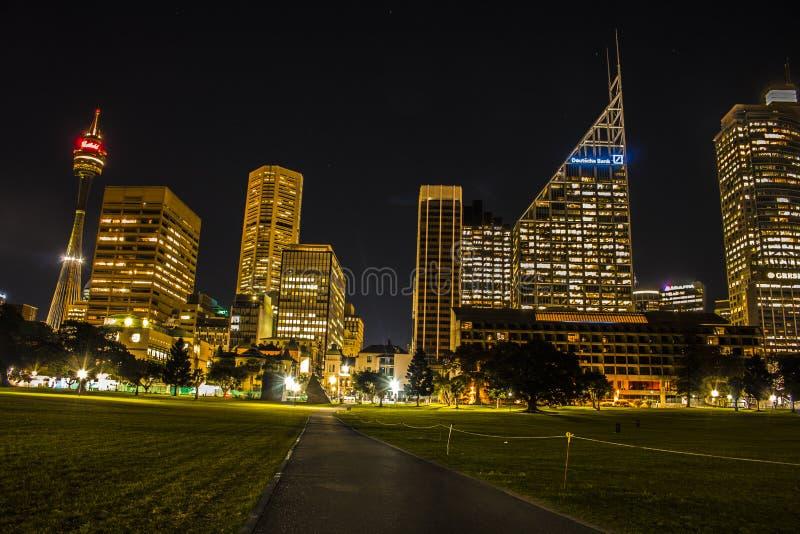 Sydney Tower en horizon van Sydney stock afbeeldingen