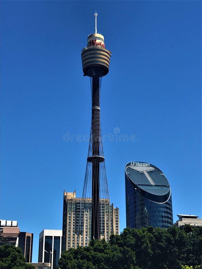 Sydney Tower Eye in Australië royalty-vrije stock foto