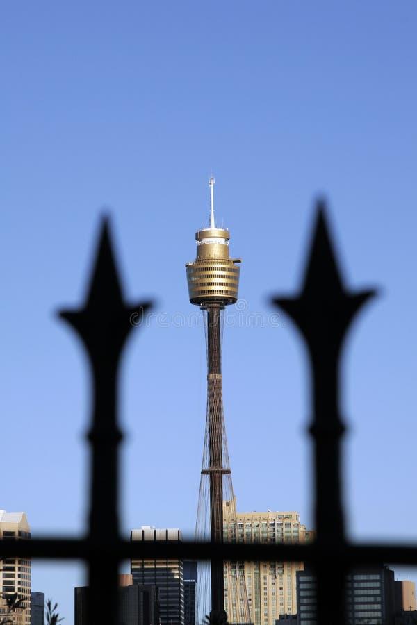 sydney wieży zdjęcia royalty free