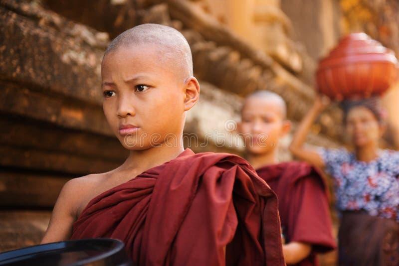 Sydostliga asiatiska unga buddistiska munkar som går morgonallmosa arkivfoto