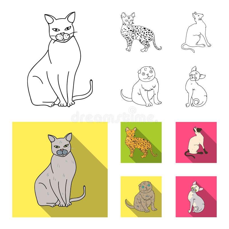 Syjamscy i inni gatunki Kot hoduje ustalone inkasowe ikony w konturze, mieszkanie symbolu zapasu ilustraci stylowa wektorowa sieć ilustracja wektor