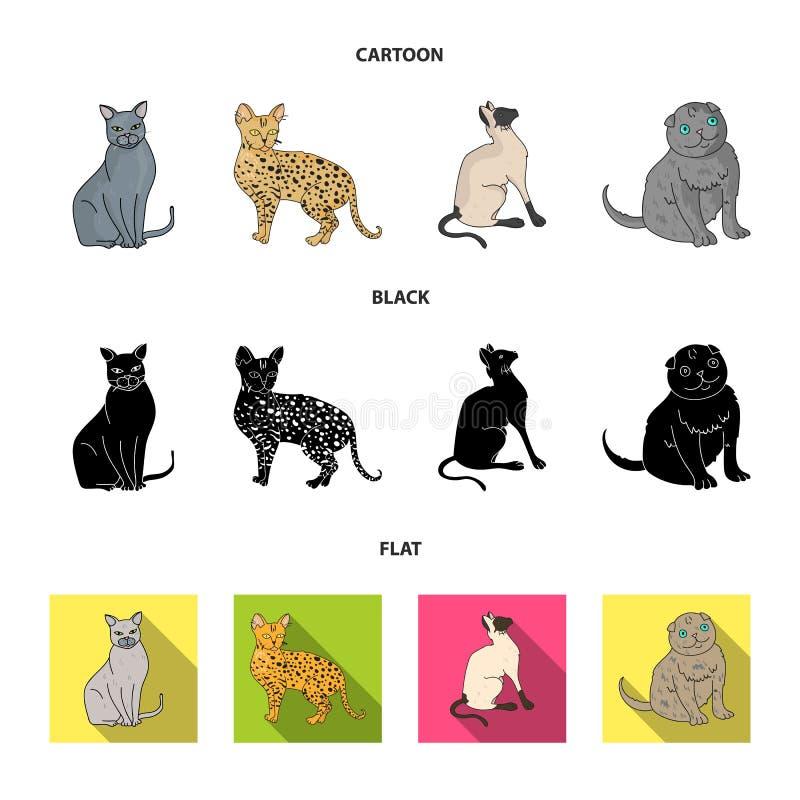 Syjamscy i inni gatunki Kot hoduje ustalone inkasowe ikony w kreskówce, czerń, mieszkanie symbolu zapasu stylowa wektorowa ilustr royalty ilustracja