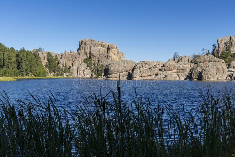 Download Sylvan lake arkivfoto. Bild av sceniskt, park, damm, cattails - 78729300