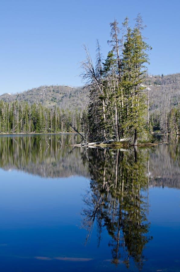 Sylvan Lake, Yellowstone National Park stock images